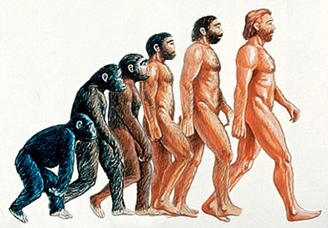 BELEIF IN EVOLUTION REQUIRES GREAT FAITH