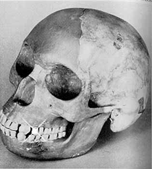 'PILTDOWN MAN' MAY BE THE BIGGEST SCIENTIFIC HOAX IN HSTORY.
