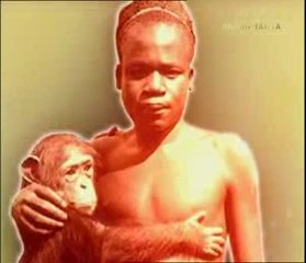 DARWINISTS SUGGESTED THAT OTA BENGA WAS 'MISSING LINK' BETWEEN APES AND HUMANS.