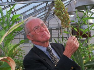 NORMAN BORLAUG, A DEVOTED CHRISTIAN, WAS THE FATHER OF THE 'GREEN REVOLUTION.'